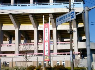 Mizuhosouru