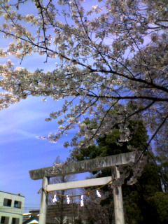 J1第5節 名古屋−横浜M