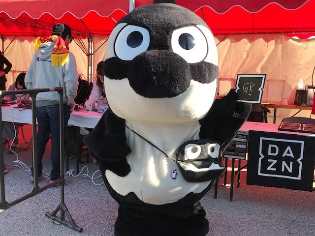 今日は豊スタでJ1昇格プレーオフ決勝 名古屋−福岡